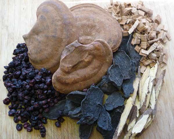 Tachyon Organ & Gland Systems Herbal Tonics